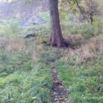 Edinburgh_path_to_the_castle-20131022-02